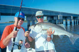Stripers are one of many game fish that often go out of their way to eat a frisky live bait. When warm summer water temps make baits lethargic, an oxygen-injection system can charge them up to eye-catching energy levels.